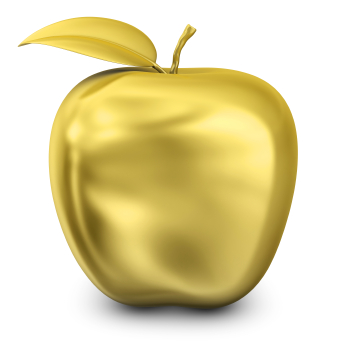"""The Shareholder Activist - Apple: My """"Say on Director Pay"""" Proposal & How I'm Voting"""